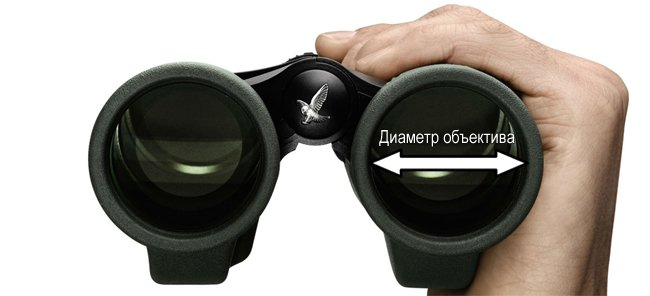 binoculars objektive diametr - Как выбрать бинокль с большим увеличением и чтобы служил вечно!
