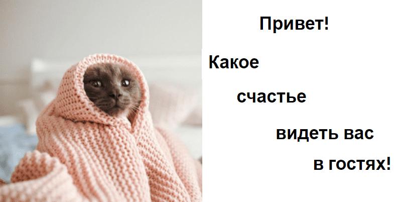 приветствие теплое